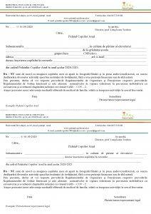 cerere inscriere Arad 2020 2021 page0001